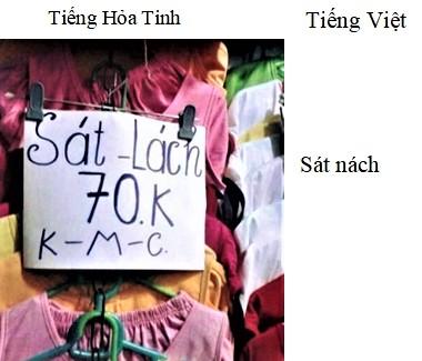 Translation (1)