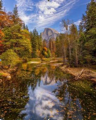 Natural Scenery (15)
