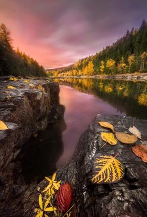 Natural Scenery (17)